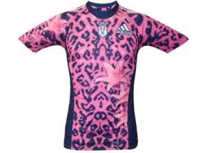 Stade leopard